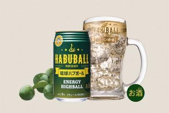 habuball-image.jpg